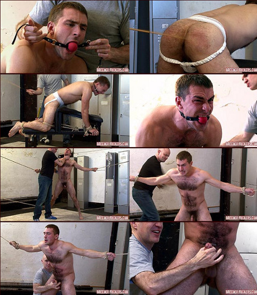 gay bdsm humiliation